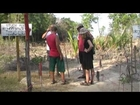 koh phra thong Part 6 thailand volunteer project x on seaturtles by MediadreamsNetwork HD 1080P