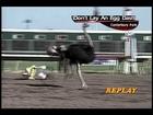 Canterbury Park Ostrich Race 7-21-12